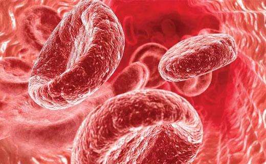средняя концентрация гемоглобина
